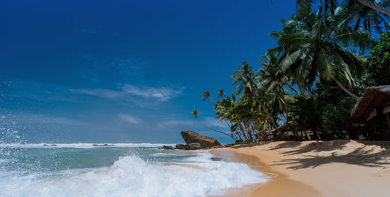prisitne beaches of mirissa, Best Places for Sri Lanka Beach Holiday