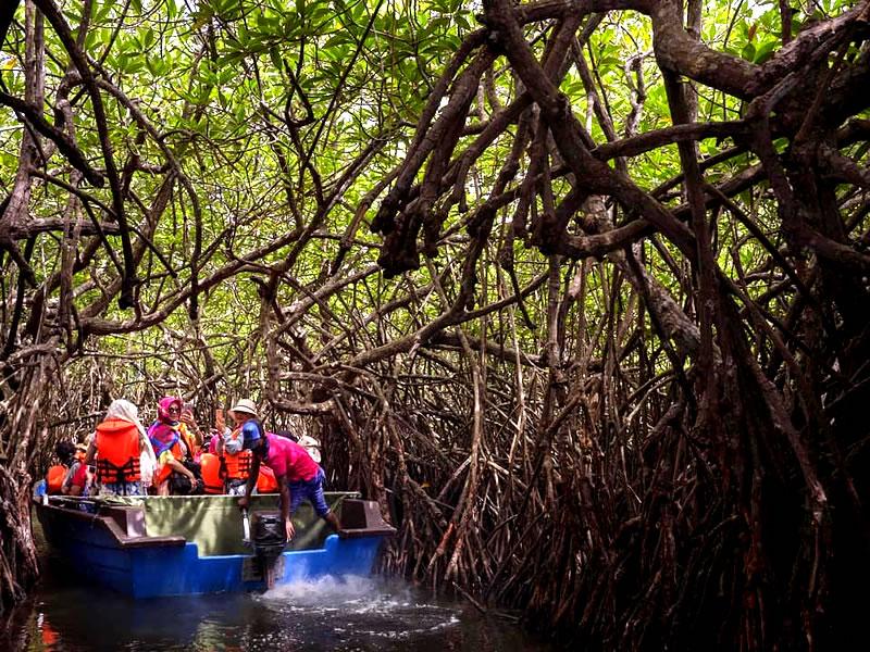 Sri Lanka Boat Trips