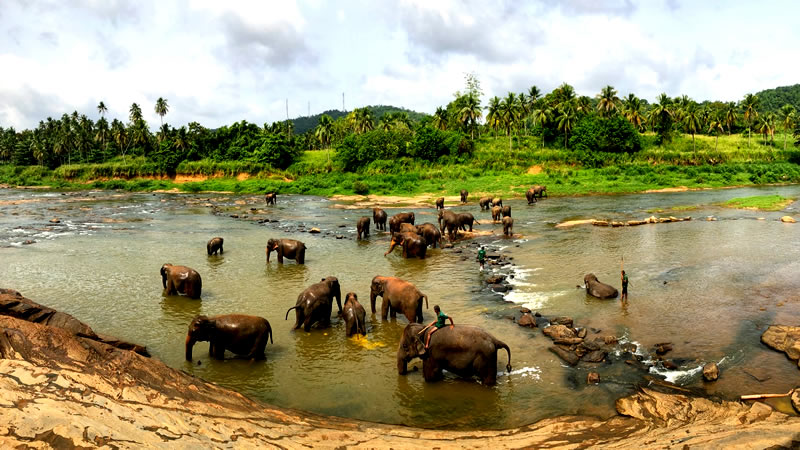 where to go in sri lanka in december, where to go in sri lanka, sri lanka holidays where to go, where to go on holiday in sri lanka, vacation in sri lanka where to go
