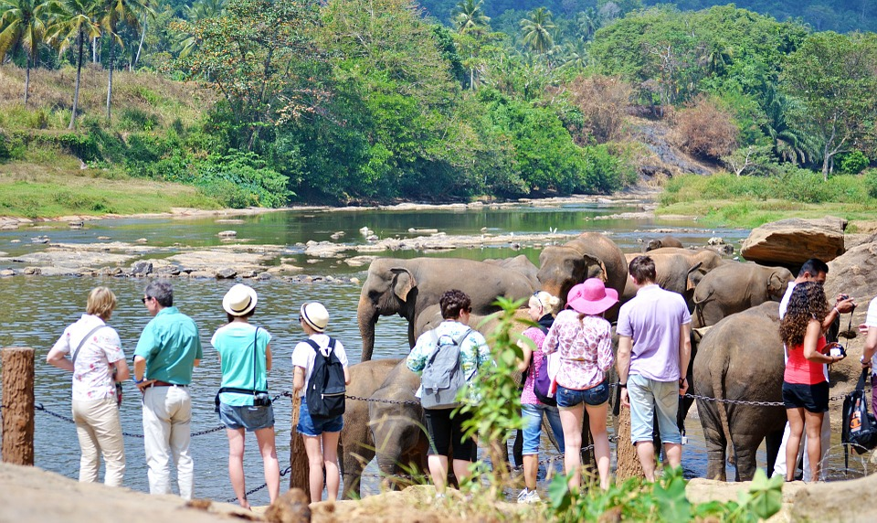 Places to visit in Sri Lanka within one day