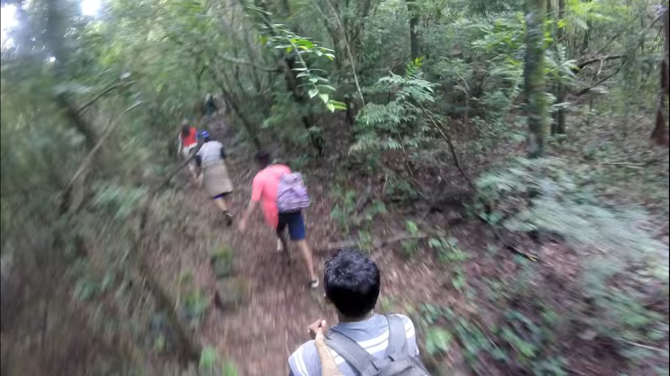 knuckles trek, 5 Best Places For Adventure Activities In Sri Lanka