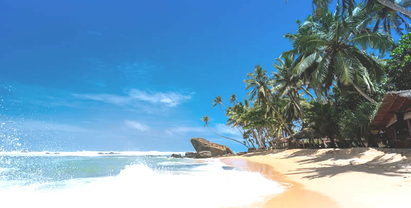 Sri Lanka Tour Deals, sri lanka holiday deals, sri lanka discounted tours, sri lanka special offers